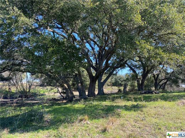 TBD Fm 318, Hallettsville, TX 77964 (MLS #401653) :: RE/MAX Land & Homes