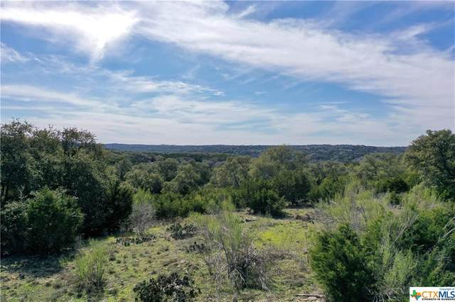 1061 Las Brisas Drive, Canyon Lake, TX 78133 (MLS #401909) :: The Zaplac Group