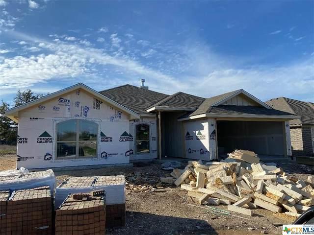 412 Damascus Drive, Belton, TX 76513 (MLS #402515) :: Vista Real Estate