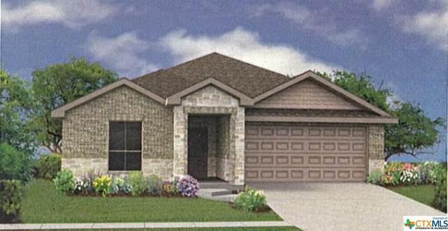 1005 Ibis Falls Loop, Jarrell, TX 76537 (MLS #402566) :: Isbell Realtors