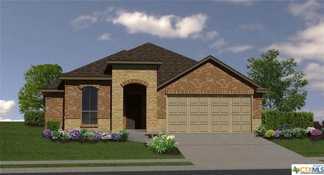 900 Ibis Falls Loop, Jarrell, TX 76537 (MLS #402602) :: Isbell Realtors