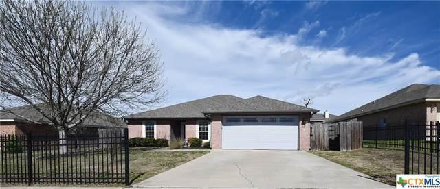 1409 Copper Creek, Killeen, TX 76549 (MLS #402656) :: Isbell Realtors
