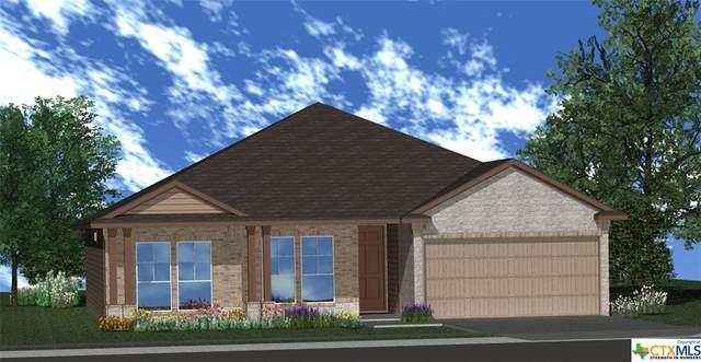 2202 Wigeon Way, Copperas Cove, TX 76522 (MLS #402715) :: Isbell Realtors
