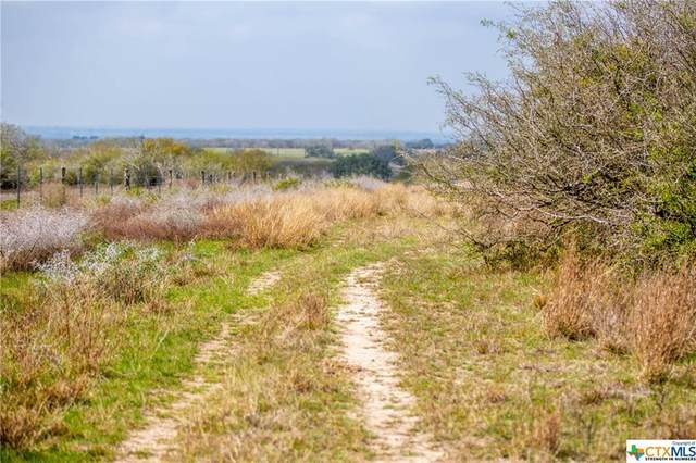 TBD Fm 884, Goliad, TX 77963 (MLS #402879) :: The Zaplac Group