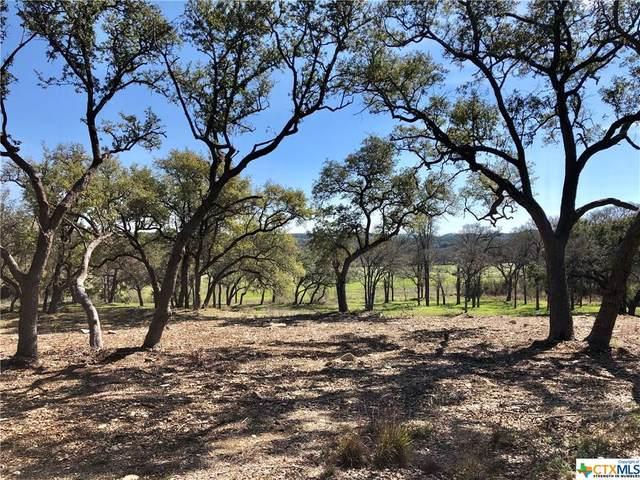 110 Single Tree Ct Court #3, Canyon Lake, TX 78133 (MLS #402925) :: Berkshire Hathaway HomeServices Don Johnson, REALTORS®