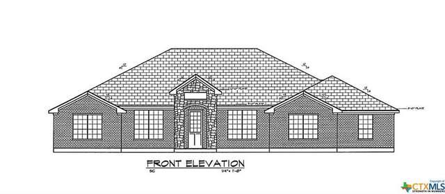 3 Deb Lynn Avenue, Lampasas, TX 76550 (#403004) :: All City Real Estate