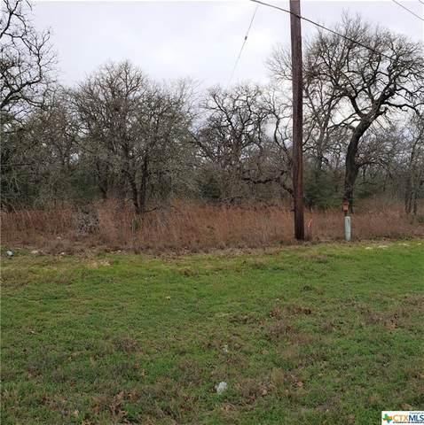 8880 Fm 1117, Seguin, TX 78155 (MLS #403051) :: The i35 Group