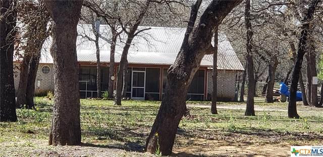 6483 County Road 434, Stockdale, TX 78160 (MLS #403378) :: Carter Fine Homes - Keller Williams Heritage