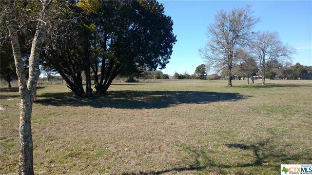 320 Oakridge Rd, Georgetown, TX 78628 (MLS #403537) :: RE/MAX Land & Homes