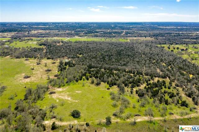 221 Old Waelder Road, Flatonia, TX 78941 (MLS #403805) :: The Real Estate Home Team