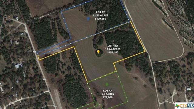 TBD Tract 4A County Road 4830, Kempner, TX 76539 (MLS #404062) :: Kopecky Group at RE/MAX Land & Homes