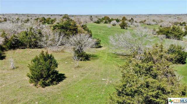 003 County Line Rd, Schulenburg, TX 78956 (MLS #404250) :: The Real Estate Home Team