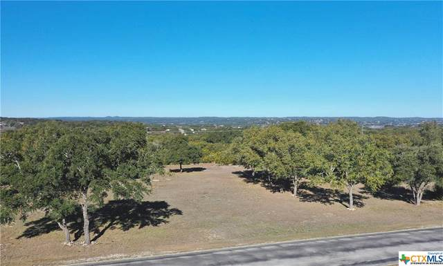 1227 Ensenada Drive, Canyon Lake, TX 78133 (MLS #404295) :: The Zaplac Group