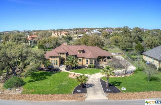 620 Cross Oak, New Braunfels, TX 78132 (#404435) :: All City Real Estate