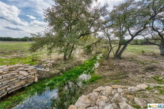 TBD County Rd 236, Liberty Hill, TX 78642 (MLS #404881) :: RE/MAX Family