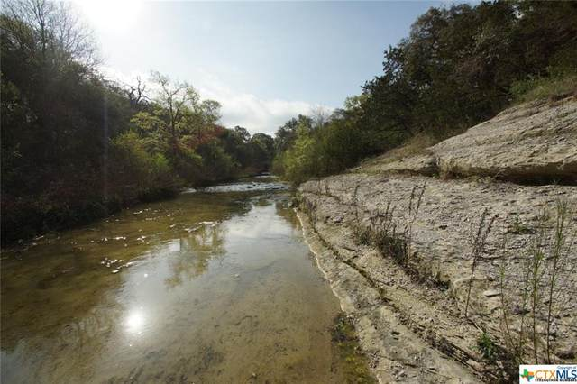 1290 County Road 100, Georgetown, TX 78626 (MLS #405347) :: RE/MAX Land & Homes