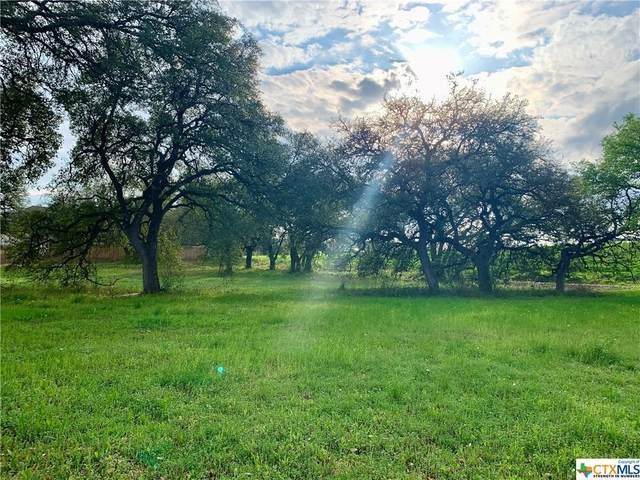 1010 Pecan Meadow Drive, Belton, TX 76513 (#405614) :: First Texas Brokerage Company