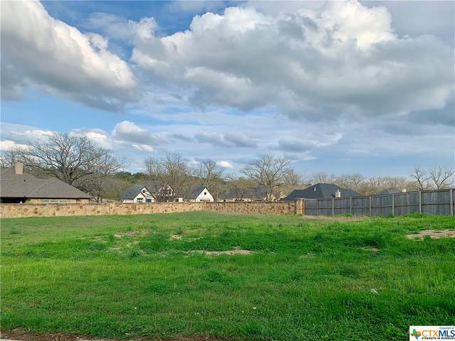 3045 Pecan Meadow Drive, Belton, TX 76513 (#405819) :: First Texas Brokerage Company