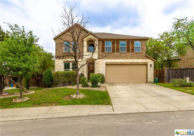 28306 Willis Ranch, San Antonio, TX 78260 (MLS #406161) :: Kopecky Group at RE/MAX Land & Homes