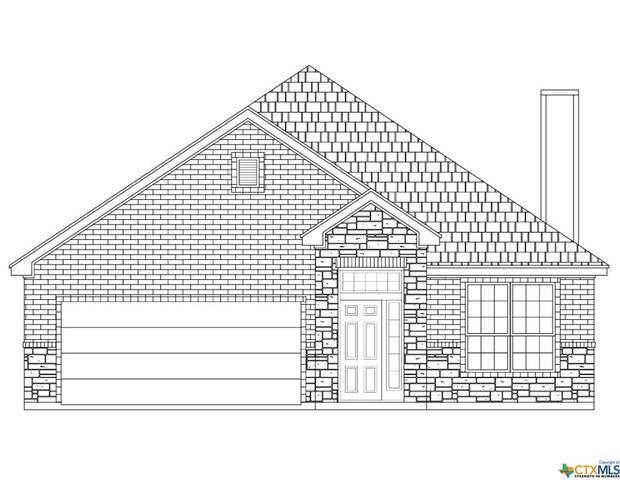 7307 Birdsnest Way, Temple, TX 76502 (MLS #406445) :: Kopecky Group at RE/MAX Land & Homes
