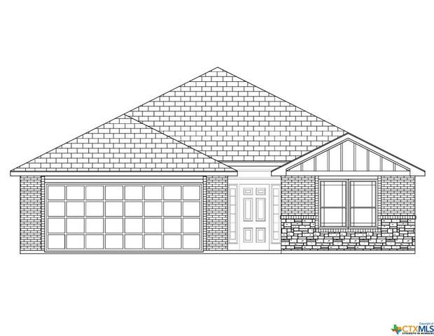 2214 Petersburg Lane, Temple, TX 76503 (MLS #406446) :: Isbell Realtors