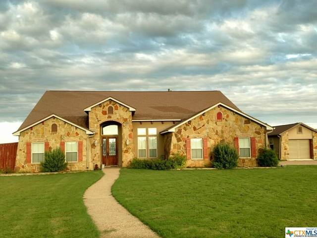 4101 Elf Trail, Belton, TX 76513 (MLS #406506) :: Kopecky Group at RE/MAX Land & Homes