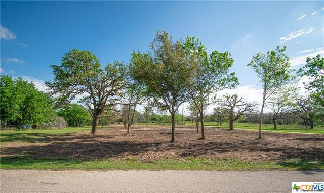 Tract 4 Weber Road, Victoria, TX 77905 (MLS #406591) :: Kopecky Group at RE/MAX Land & Homes