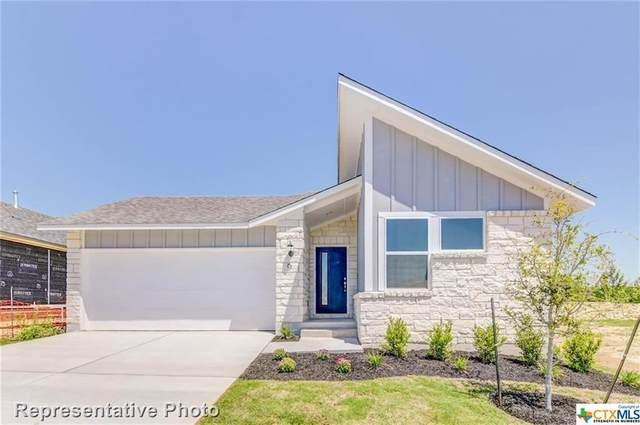 253 Sage Meadows, San Marcos, TX 78666 (MLS #406671) :: Kopecky Group at RE/MAX Land & Homes