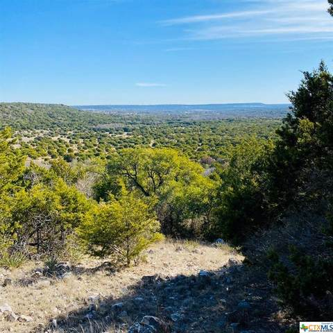 3391 Fm 1113 Lot 9, Copperas Cove, TX 76522 (MLS #406704) :: Isbell Realtors