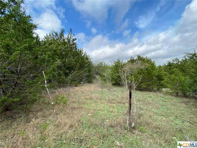 3391 Fm 1113 Lot 15, Copperas Cove, TX 76522 (MLS #406716) :: Isbell Realtors