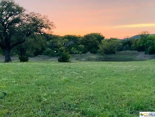 3391 Fm 1113 Lot 16, Copperas Cove, TX 76522 (MLS #406717) :: Isbell Realtors