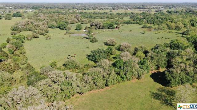 975 County Road 130, Hallettsville, TX 77964 (MLS #407358) :: RE/MAX Land & Homes