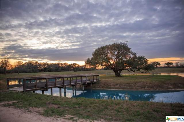 1584 Mccampbell Road, Goliad, TX 77963 (MLS #407549) :: The Real Estate Home Team