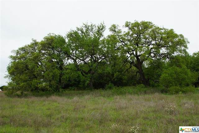 370 County Rd 204 #3, Liberty Hill, TX 78642 (MLS #407583) :: RE/MAX Family