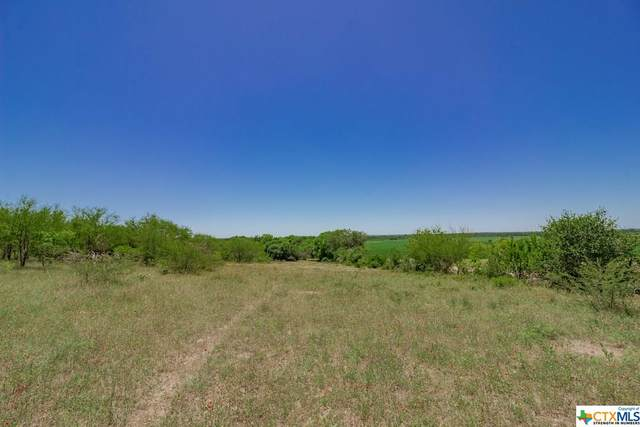 000 County Rd 117, Runge, TX 78151 (MLS #408687) :: The Zaplac Group
