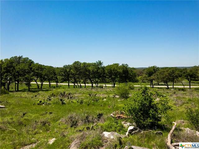 Lot 99 Axis Circle, Fredericksburg, TX 78624 (MLS #408822) :: Kopecky Group at RE/MAX Land & Homes