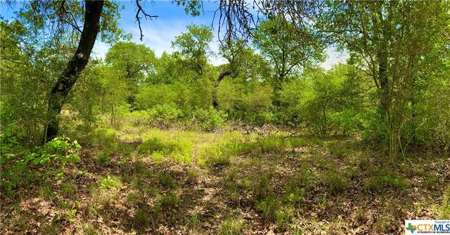 01 Flash Circle, Luling, TX 78648 (MLS #410666) :: The Zaplac Group