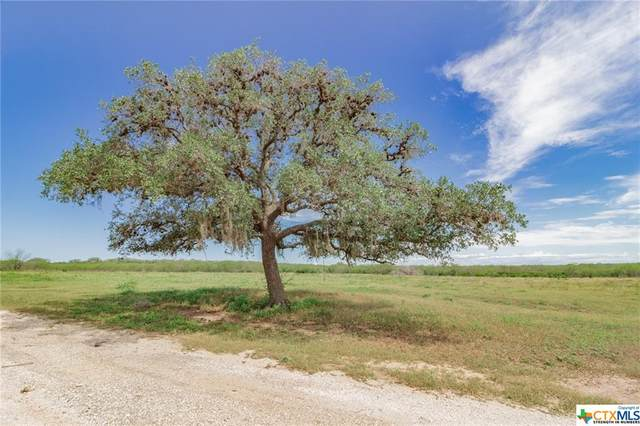 1471 Welder Road Road, Goliad, TX 77963 (MLS #410713) :: The Zaplac Group