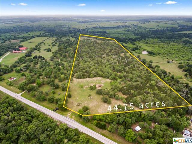 TBD Fm 86, Lockhart, TX 78644 (MLS #410803) :: The Real Estate Home Team
