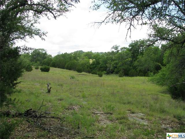 TBD County Rd 155, Gatesville, TX 76528 (MLS #410842) :: The Real Estate Home Team