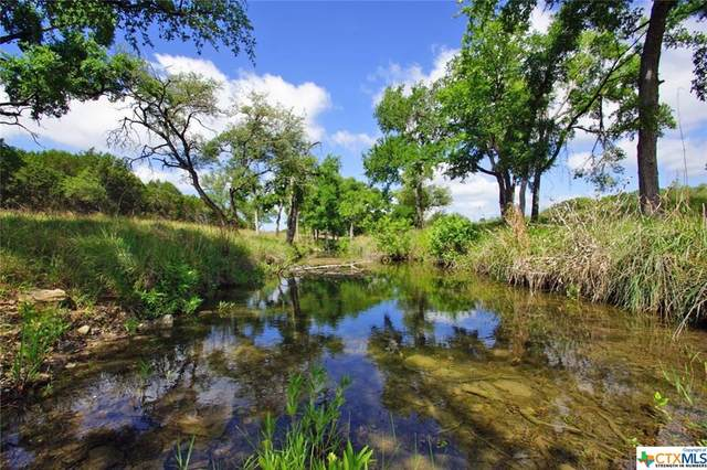Lot 11A County Road 225, Briggs, TX 78608 (MLS #410917) :: The Zaplac Group