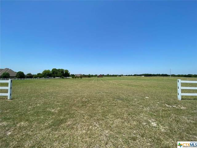7734 Boutwell Drive, Temple, TX 76502 (MLS #411056) :: Kopecky Group at RE/MAX Land & Homes
