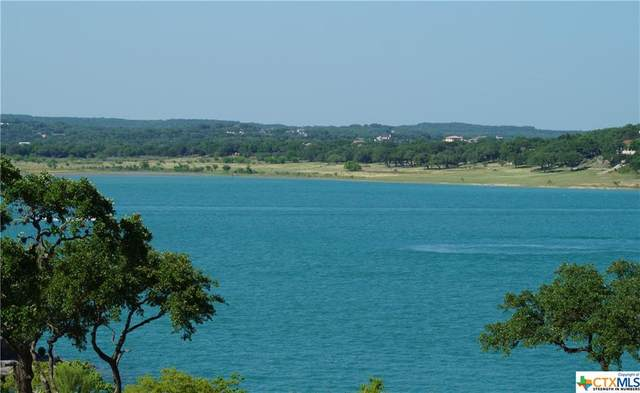 2219 Lakeview Drive, Canyon Lake, TX 78133 (MLS #411118) :: Berkshire Hathaway HomeServices Don Johnson, REALTORS®