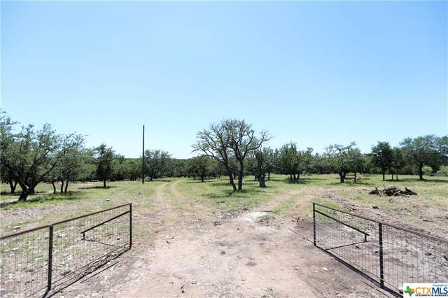 TBD-3 Cr 111, Lampasas, TX 76550 (MLS #411119) :: The Real Estate Home Team