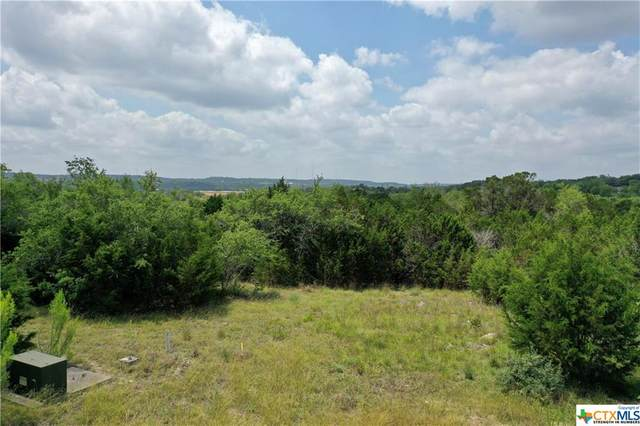 106 Cielo Vista, Canyon Lake, TX 78133 (MLS #411147) :: The Zaplac Group