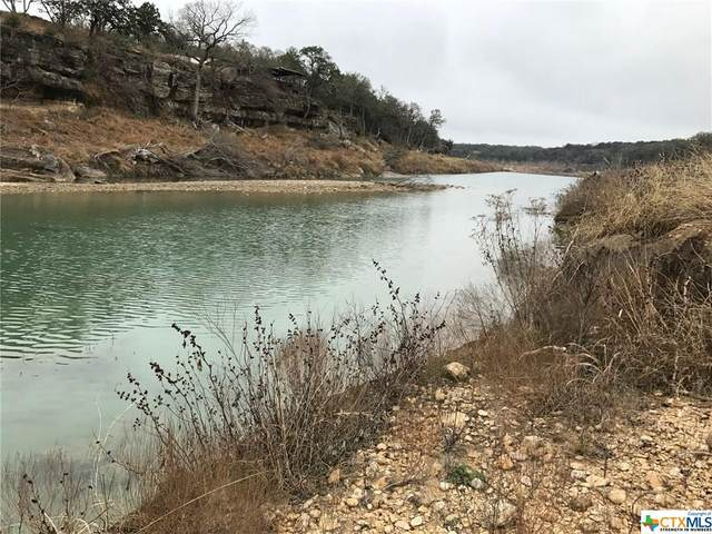 401 Days End Road, Wimberley, TX 78676 (MLS #411172) :: Brautigan Realty