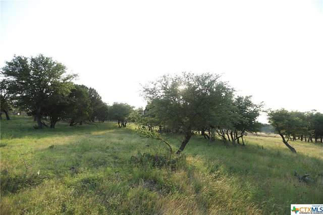 TBD-6 Cr 111, Lampasas, TX 76550 (MLS #411202) :: The Real Estate Home Team