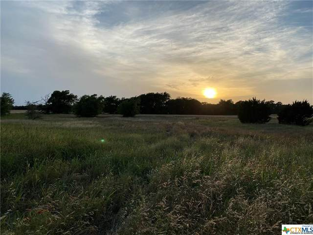TBD Fm 182 Highway, Valley Mills, TX 76689 (MLS #411238) :: Kopecky Group at RE/MAX Land & Homes