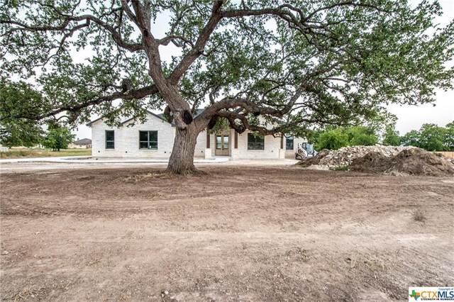 8207 Collins Creek Drive, Salado, TX 76571 (MLS #411277) :: RE/MAX Family