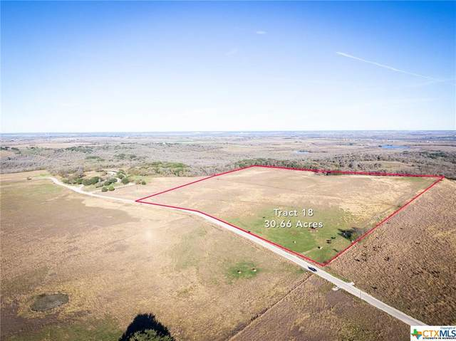 925 Branch Road, Geronimo, TX 78155 (MLS #411287) :: The Zaplac Group